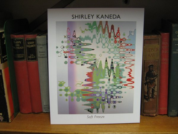 Image for Shirley Kaneda: Soft Freeze