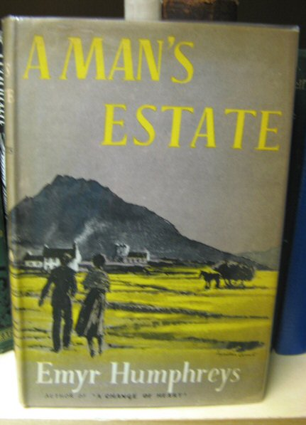 Image for A Man's Estate
