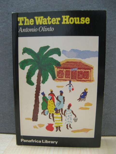 Image for The Water House (Panafrica Library)