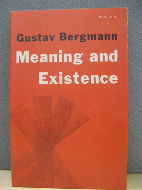 Image for Meaning and Existence