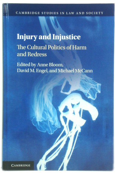 Image for Injury and Injustice: The Cultural Politics of Harm and Redress (Cambridge Studies in Law and Society)