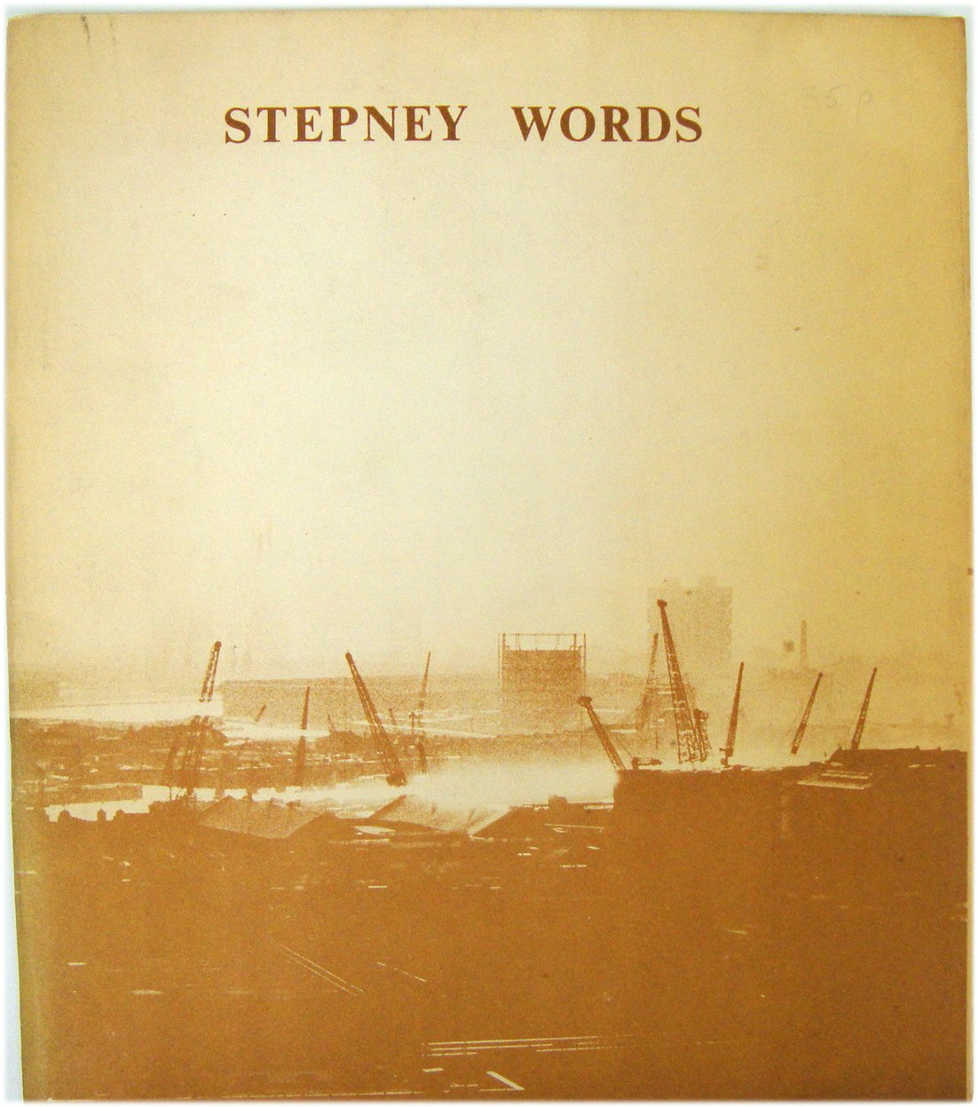 Image for Stepney Words
