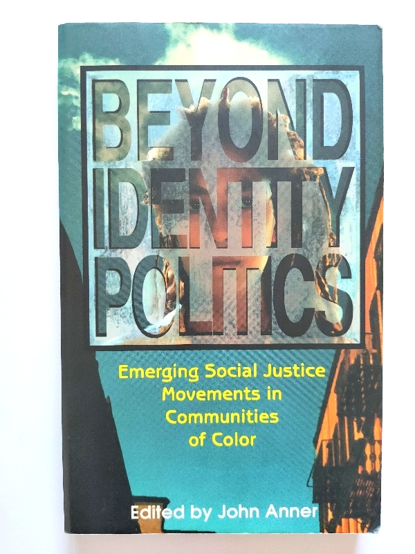 Image for Beyond Identity Politics: Emerging Social Justice Movements in Communities of Color