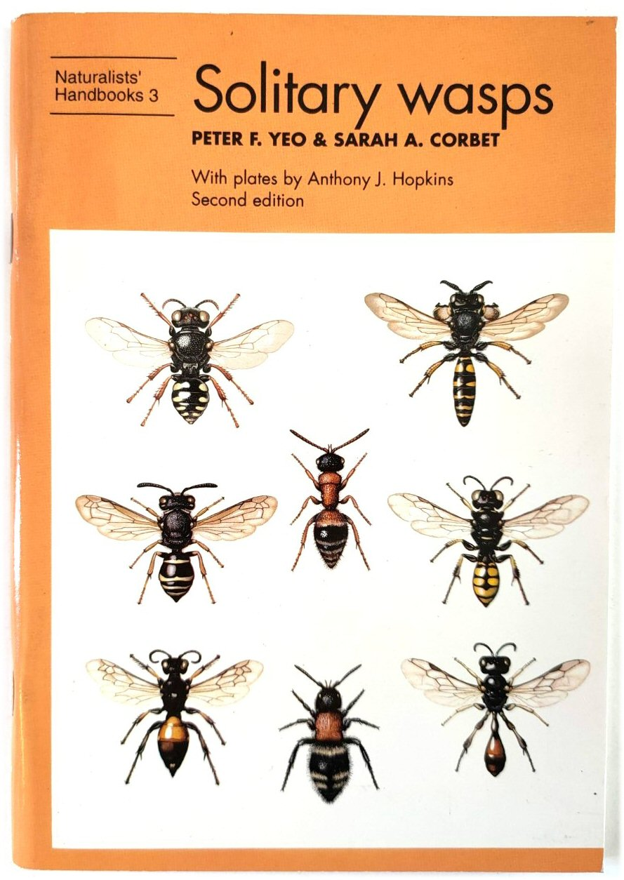 Image for Solitary Wasps (Naturalists' Handbooks 3)